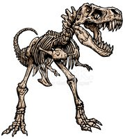 dibujo esqueleto de dinosaurio