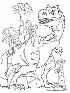 rex en su habitat