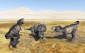 triceraptops acorralado