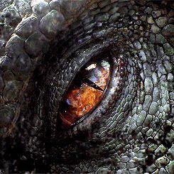 ojo de dinosaurio