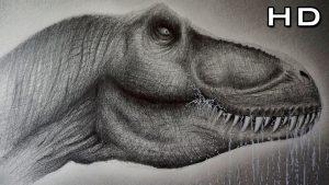 dibujo profesional cabeza rex