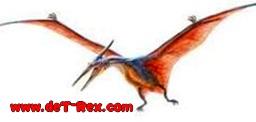 pose de pterosaurio