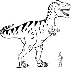 t-rex comparado con humano