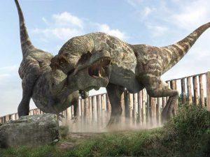 pela entre tiranosaurios rex