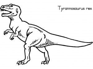 t-rex de 10 a 15 años